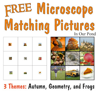 FREE Microscope Matching Pictures for Early Elementary