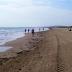 Elche elaborará un plan para regular aforo, accesos y distancias en playas