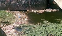 Arahman Minta Pemerintah Tempatkan Bak Sampah di Kawasan Sungai Bronjong