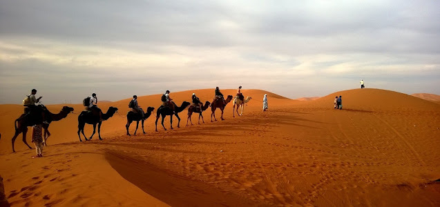 Rajasthan Travel Guide, Rajasthan Tour Guide