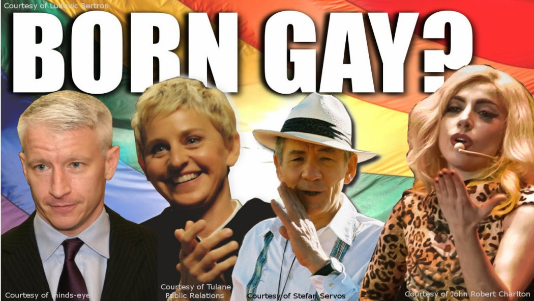 Gay Porn Photo Curves Members
