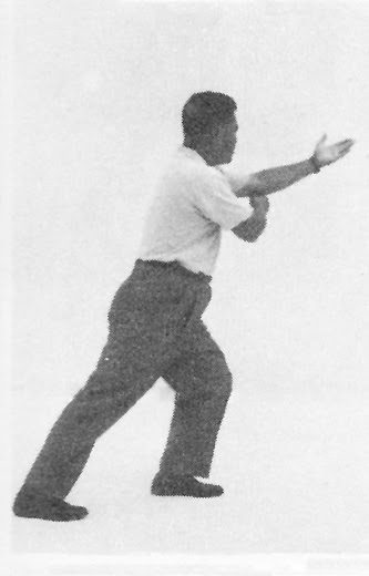 Tai Chi Chuan (Square Form) 24. Step Back And Repulse Monkey