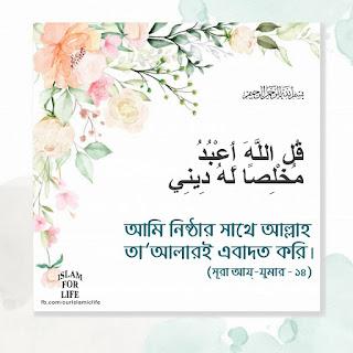 ইসলামিক পিকচার download ইসলামিক ছবি ডাউনলোড