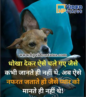 Love Best Shayari