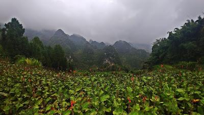 Wietnam Ha Giang