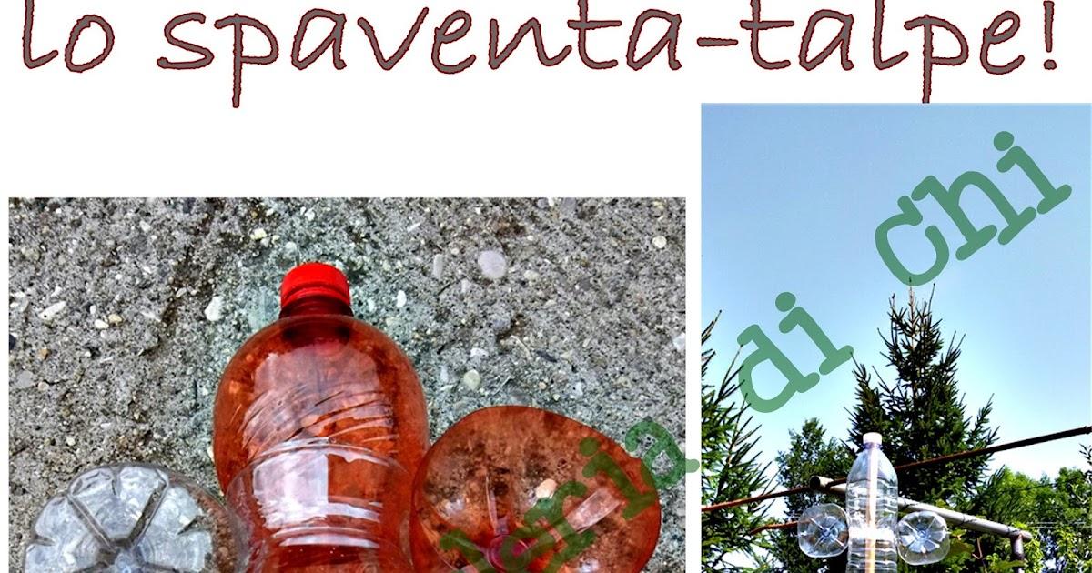 La ricicleria di chi problemi di talpe in giardino io for Talpe in giardino