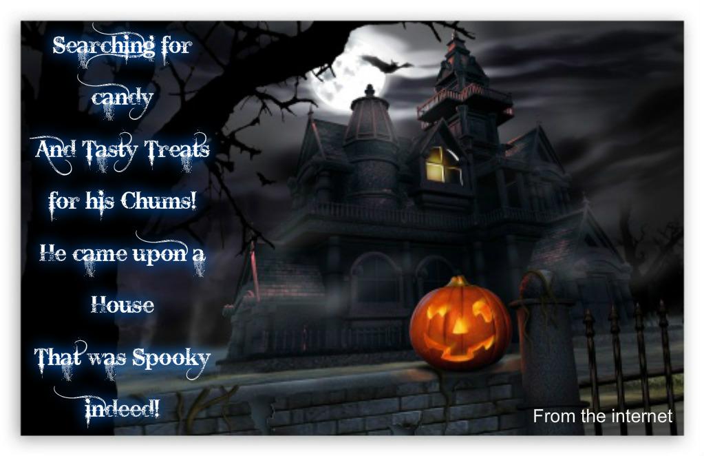 Speedy the cheeky house bunny: Twas The Night Before Halloween!