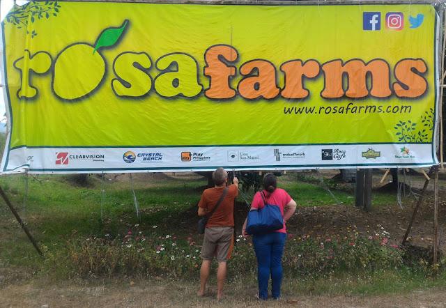 Tourist at Rosa Farm