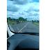 Motorista flagra 19 jegues na BA-417 entre Serrolândia e Várzea do Poço