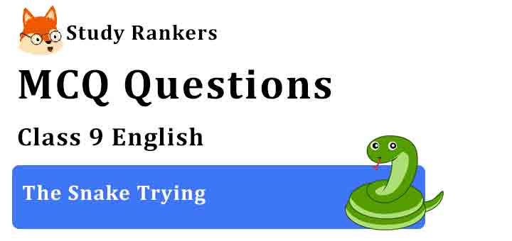 MCQ Questions for Class 9 English The Snake Trying Beehive