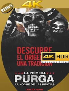 12 Horas para Sobrevivir: El Inicio (2018) 4k BD Remux Latino [GoogleDrive] SilvestreHD