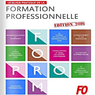 Le guide pratique de la formation professionnelle 2016