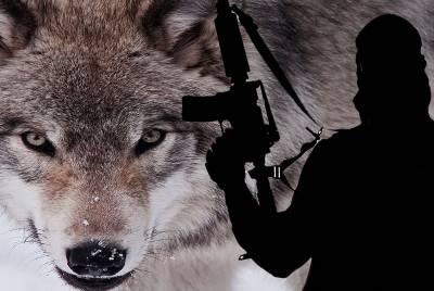 Οι «μοναχικοί λύκοι» μεγαλύτερη απειλή για τη δύση