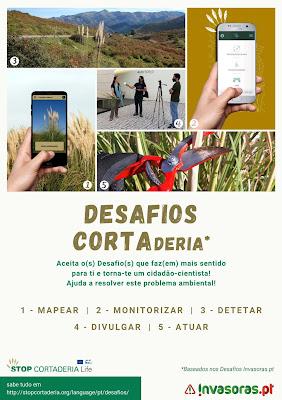 Folheto Desafios CORTAderia