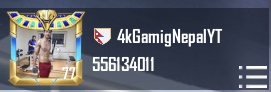 4k Gaming Nepal Pubg Id Number