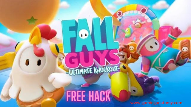 fall guys hack