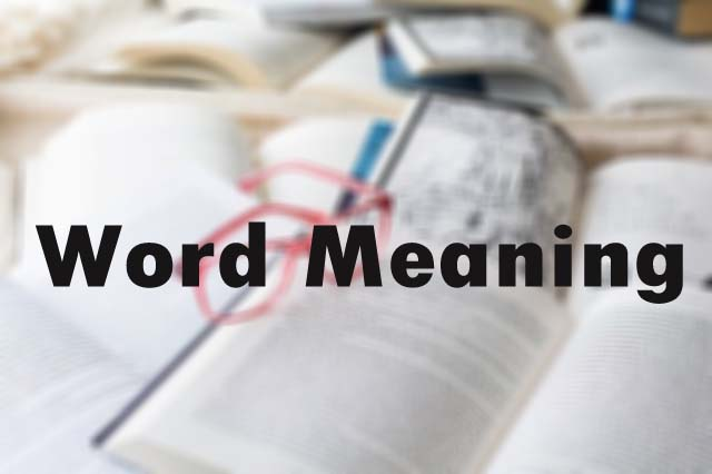 Flamingo Class 12 Indigo Summary | Question Word Meanings