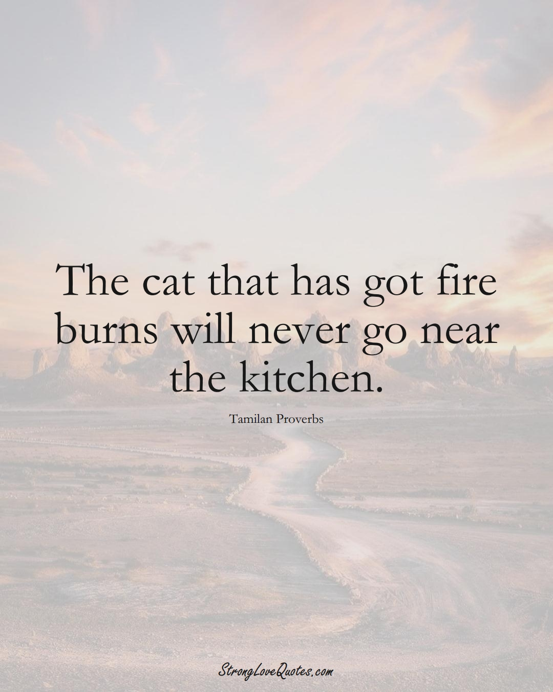 The cat that has got fire burns will never go near the kitchen. (Tamilan Sayings);  #aVarietyofCulturesSayings