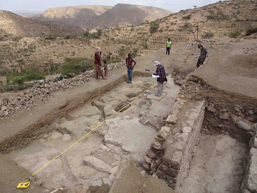 Discovery of thousands of animal bones reveals cosmopolitan diet of early Muslim communities in Ethiopia