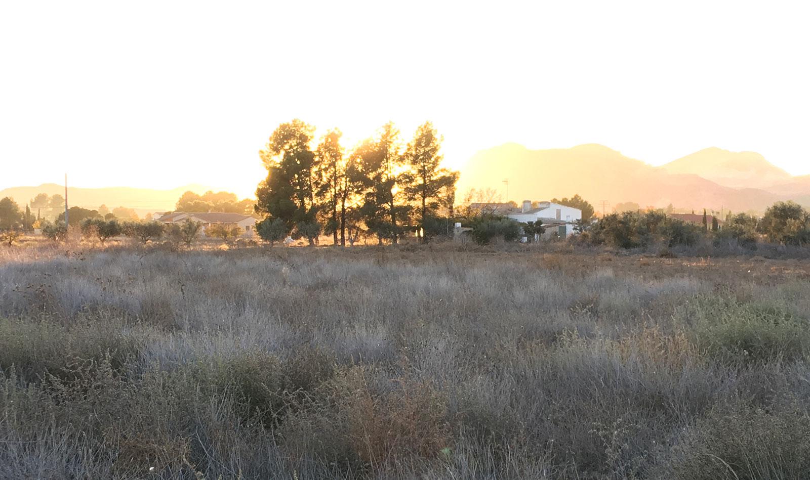 puesta de sol desde la senda de los jinetes