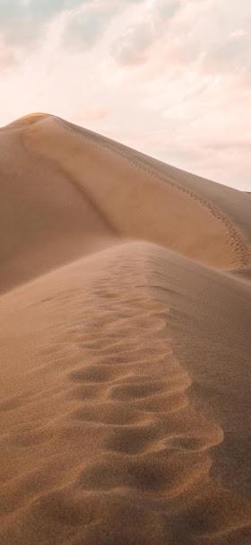 Sand dunes in the vast desert wallpaper