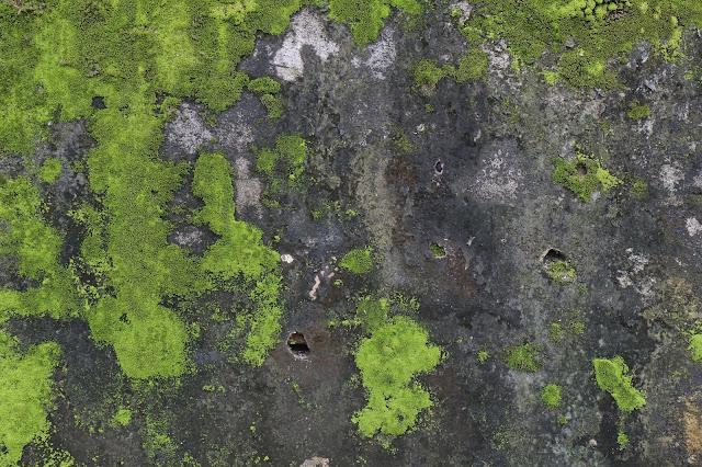 oude beton, rotte beton, herstellen, vastmans frank, betonvloeren