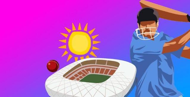 cricket bets win big