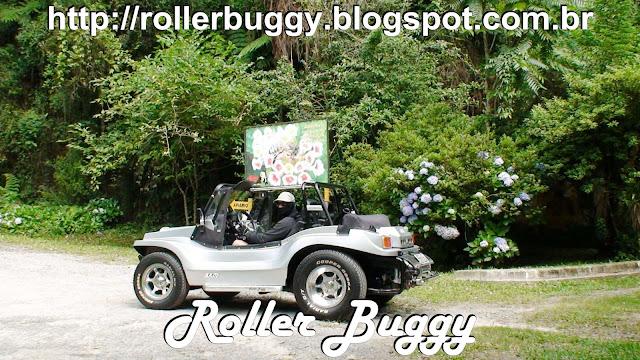 http://rollerbuggy.blogspot.com.br/2015/12/2015-novembro-muita-chuva-e-cidade-das.html