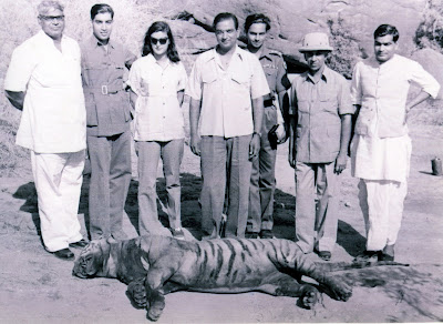 Tiger-Shoot-on-river-Chambal-1952