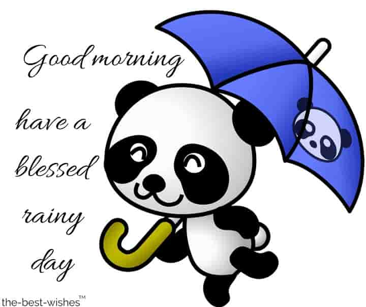 rainy good morning wishes with cute panda