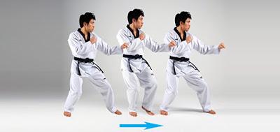 Teknik Dasar Beladiri Taekwondo
