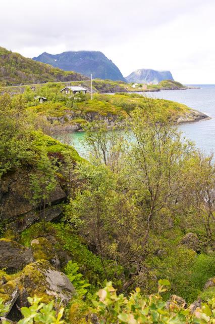 Isola di Senja (Gryllefjord e Hamn)-Isola Lofoten