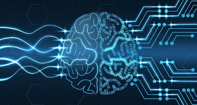 A new type of artificial neural network inspired by the human brain