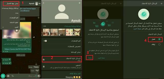 الرسائل ذاتية الإختفاء despairing message whatsapp
