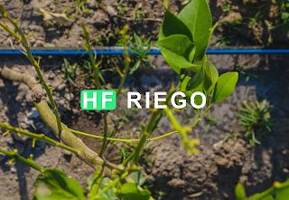 HF Riego: Herramienta Web