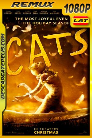 Cats (2019) 1080p BDRemux Latino – Ingles