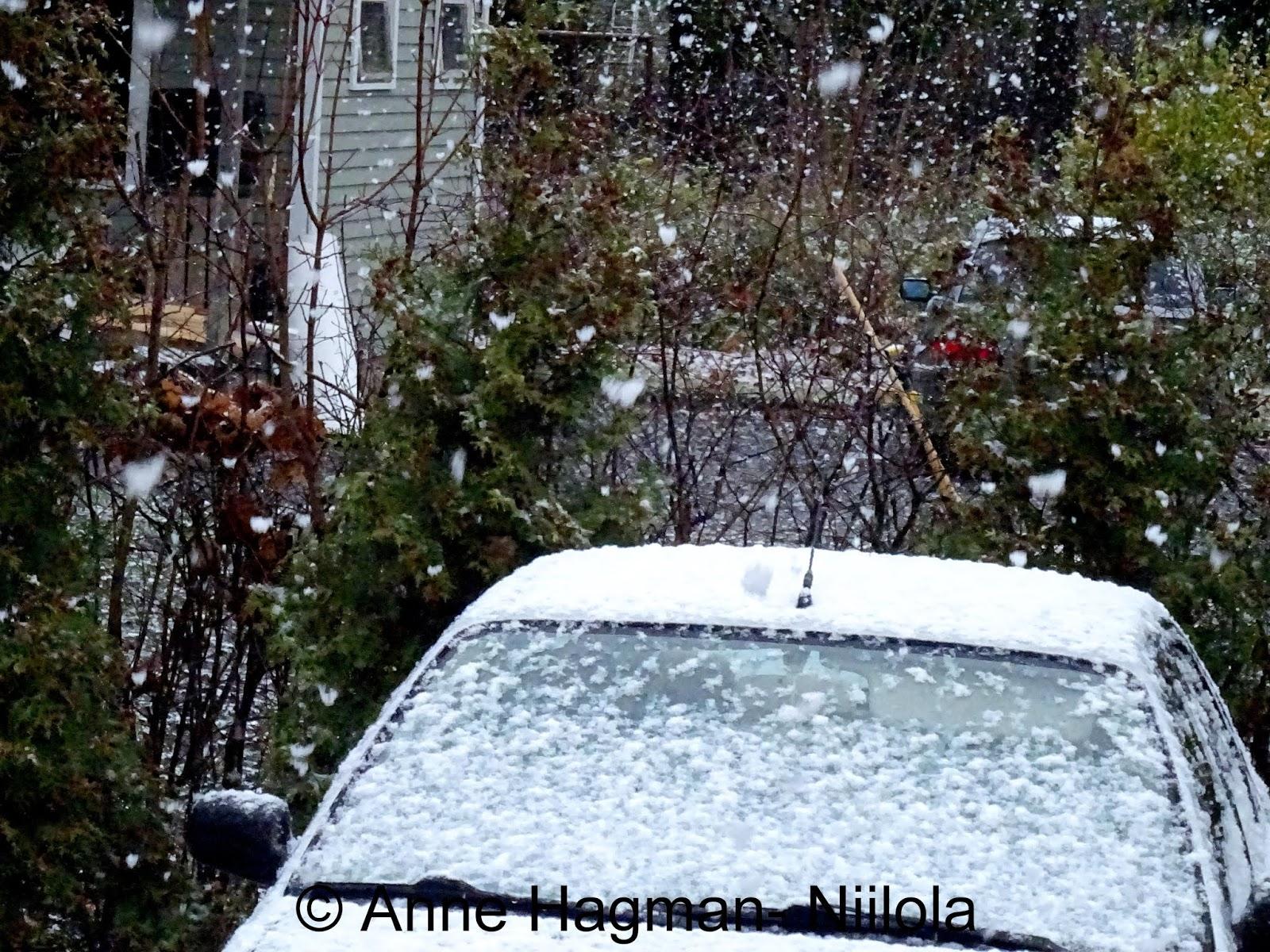 Valkoinen Maa Lunta Sataa