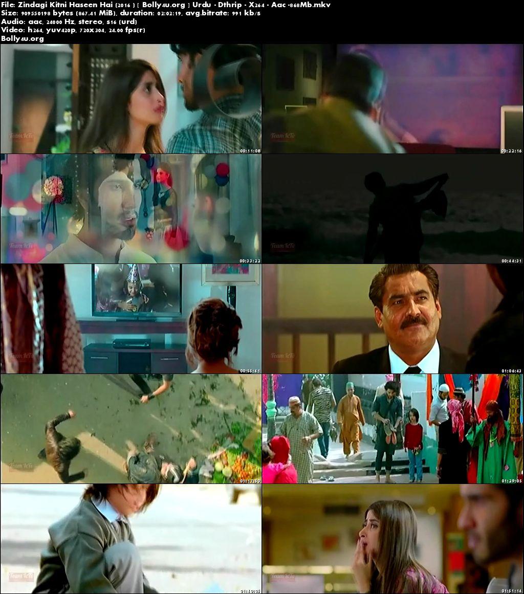 Zindagi Kitni Haseen Hai 2016 DTHRip 350MB Pakistani Urdu 480p Download