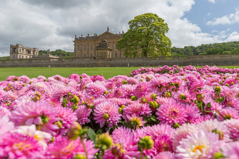 Festival floral de la RHS en Chatsworth House and Garden