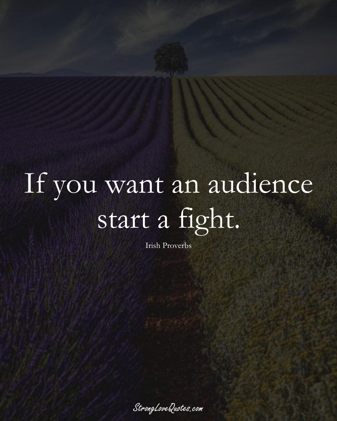 If you want an audience start a fight. (Irish Sayings);  #EuropeanSayings