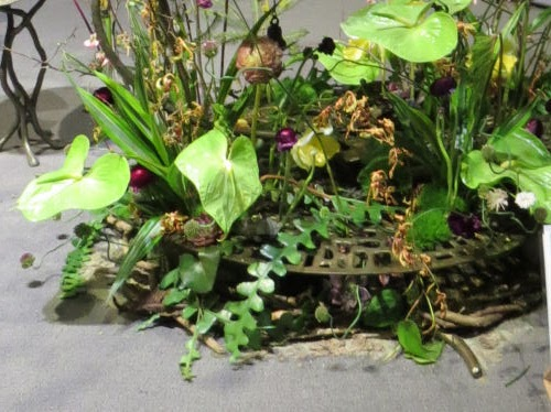 Philadelphia Flower Show 2019 - green