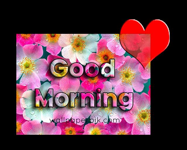 good morning wish for gf image good morning wish pics