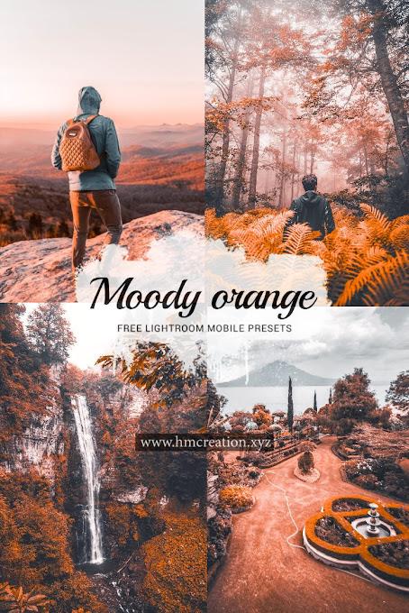 Moody orange lightroom mobile presets free download