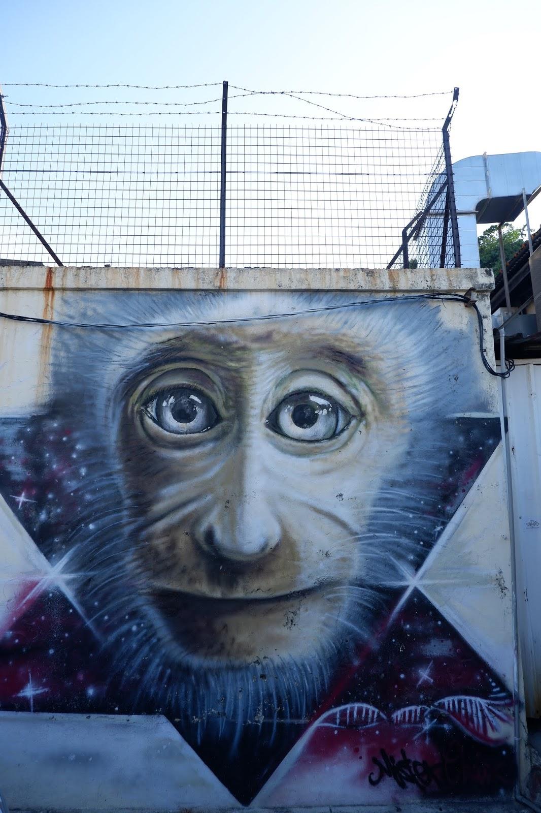 penang street art (4)