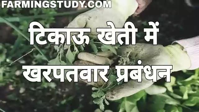 टिकाऊ खेती/स्थाई कृषि में खरपतवार प्रबंधन की विधियां लिखिए, weed control in sustainable farming in hindi, टिकाऊ खेती में खरपतवार प्रबंधन