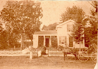 Shagbark hickory, 1875, Hickory Hurst Farm