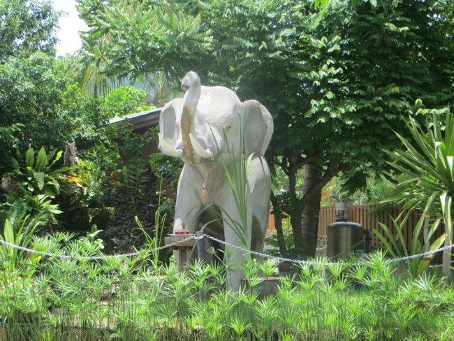 Статуя слона ко Тао