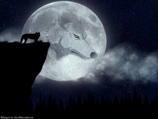 full moon wolf wallpaper - Mobile wallpapers