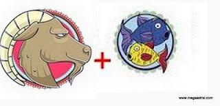 peixes casa 1