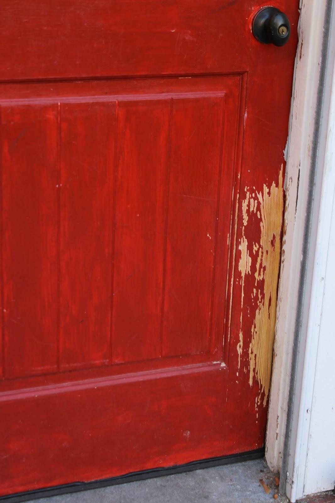 Door Dog Protector Amp Claws Off Patio Screen Door Protector